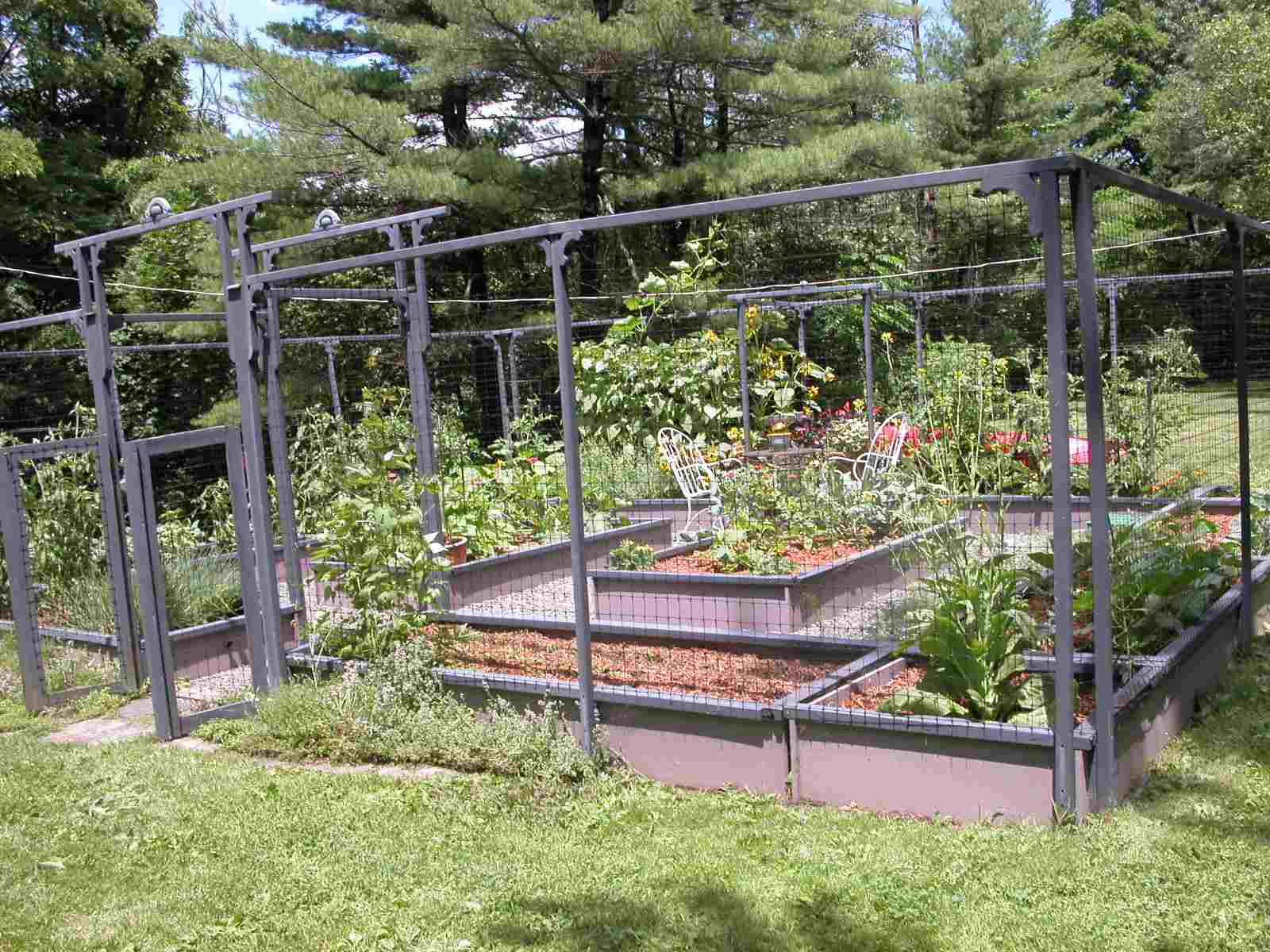 Fenced area just for vegetable gardening.
