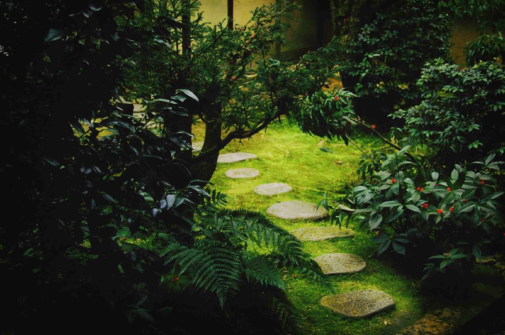 Camino de jardín de piedra escalonada
