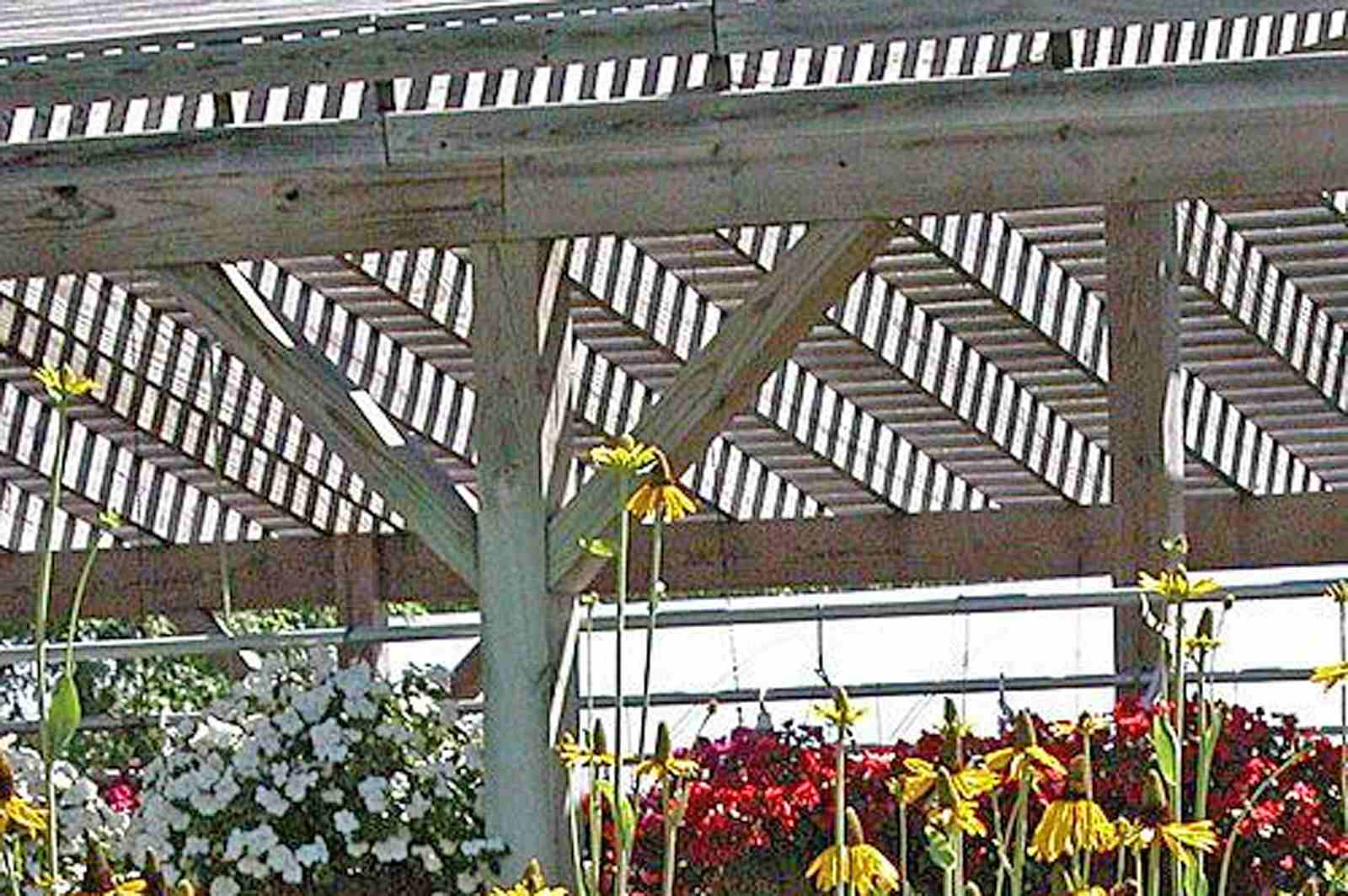 Lathe Arbor for Shading Plants