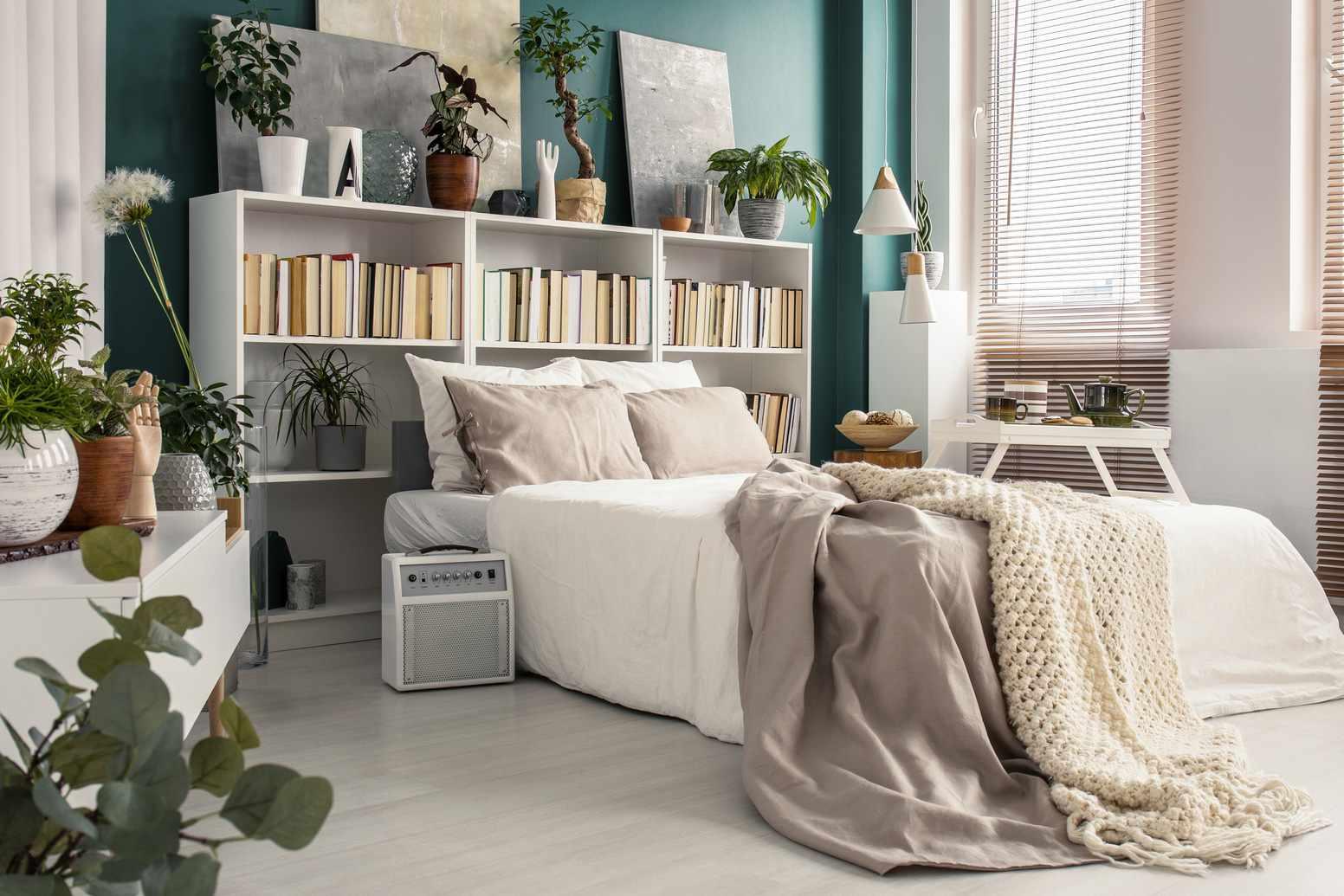 bookshelf behind a bed