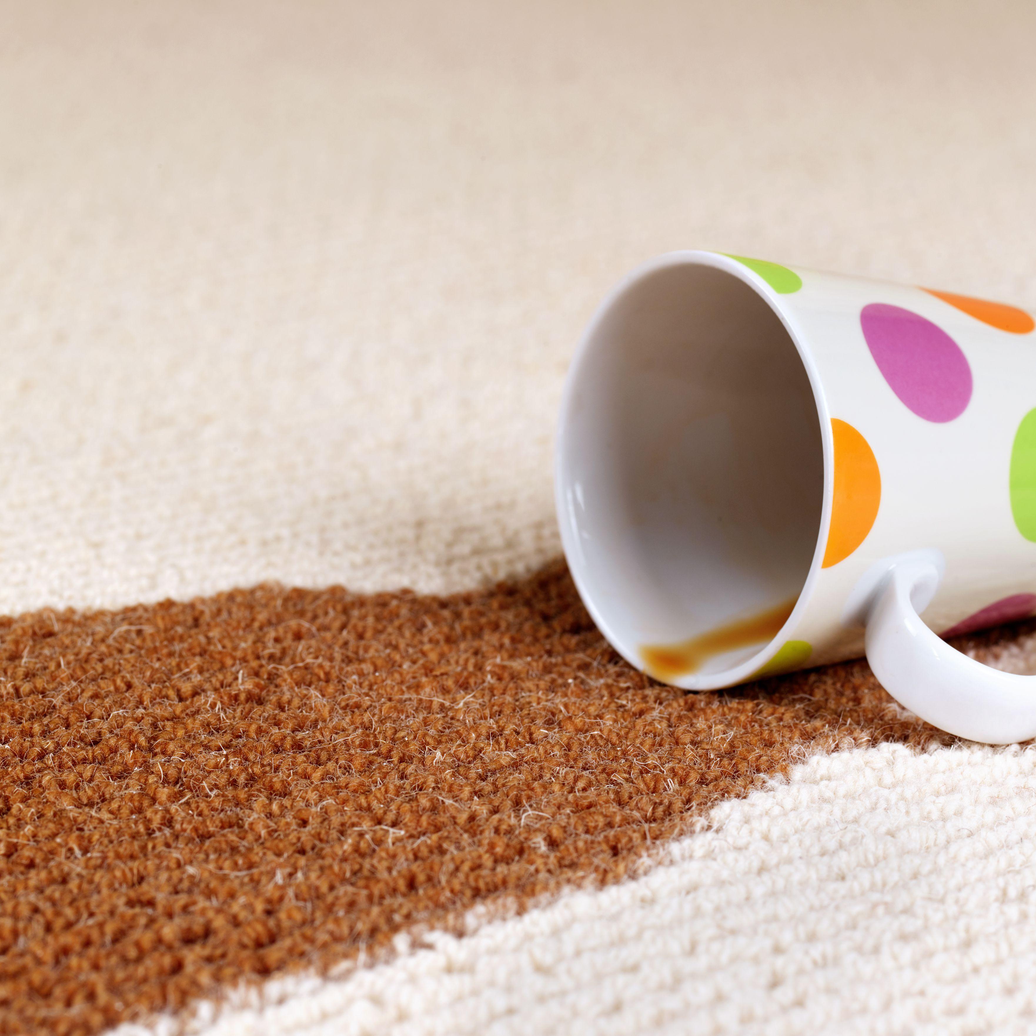 Zep Mercial Carpet Extractor Cleaner Carpet Vidalondon
