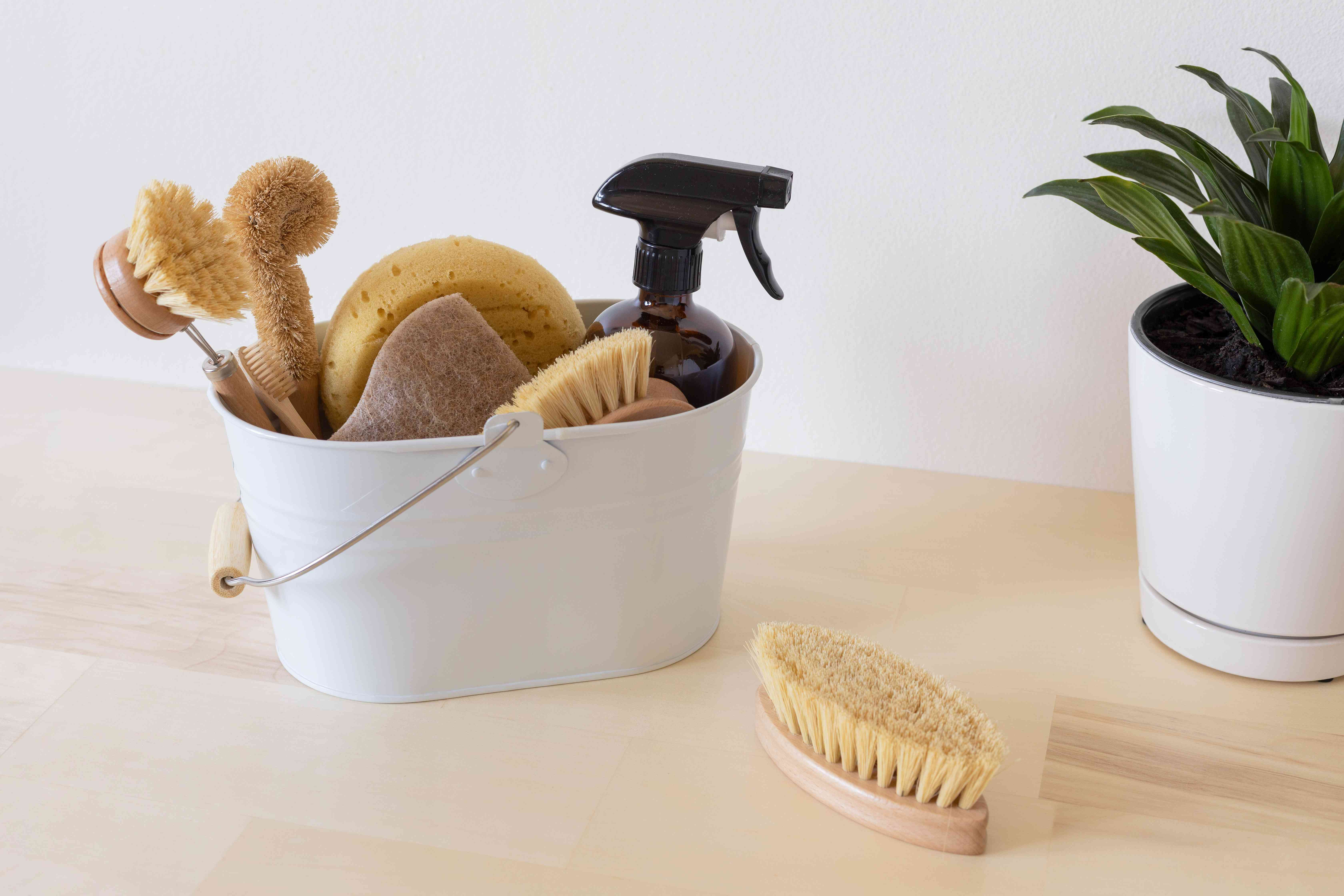 White metal caddy holding sponges and brushes next to houseplant