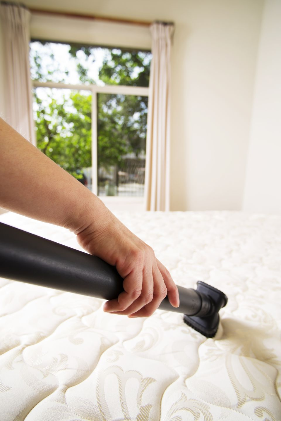 person vacuuming mattress