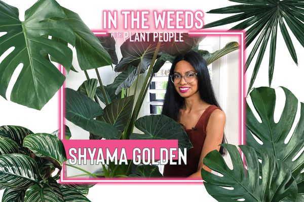 Shyama Golden for In the Weeds With Plant People