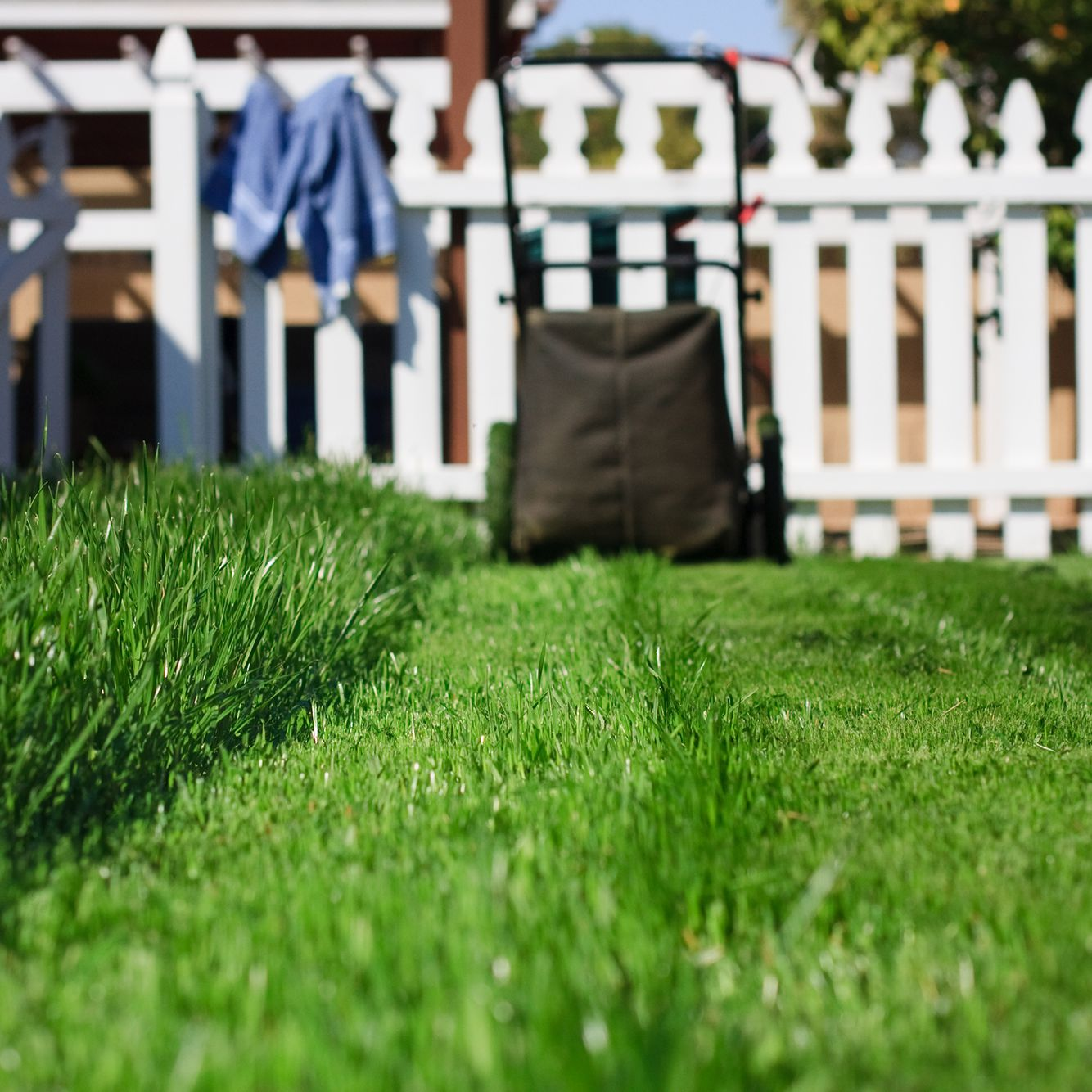 mulching mowers allow you to use lawn grass clippings