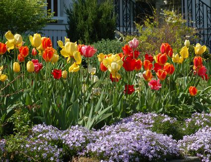 DIY Landscaping Projects: An Overview