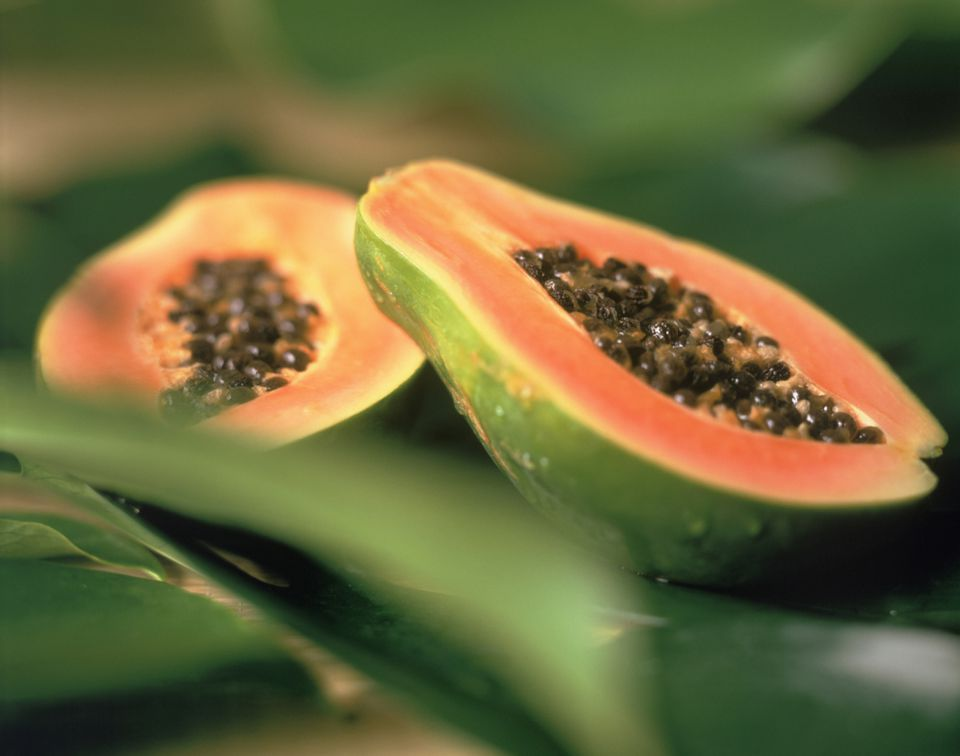 papaya fruit on leaves