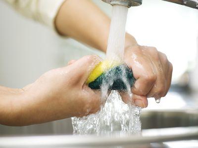 Person rinsing sponge under kitchen faucet