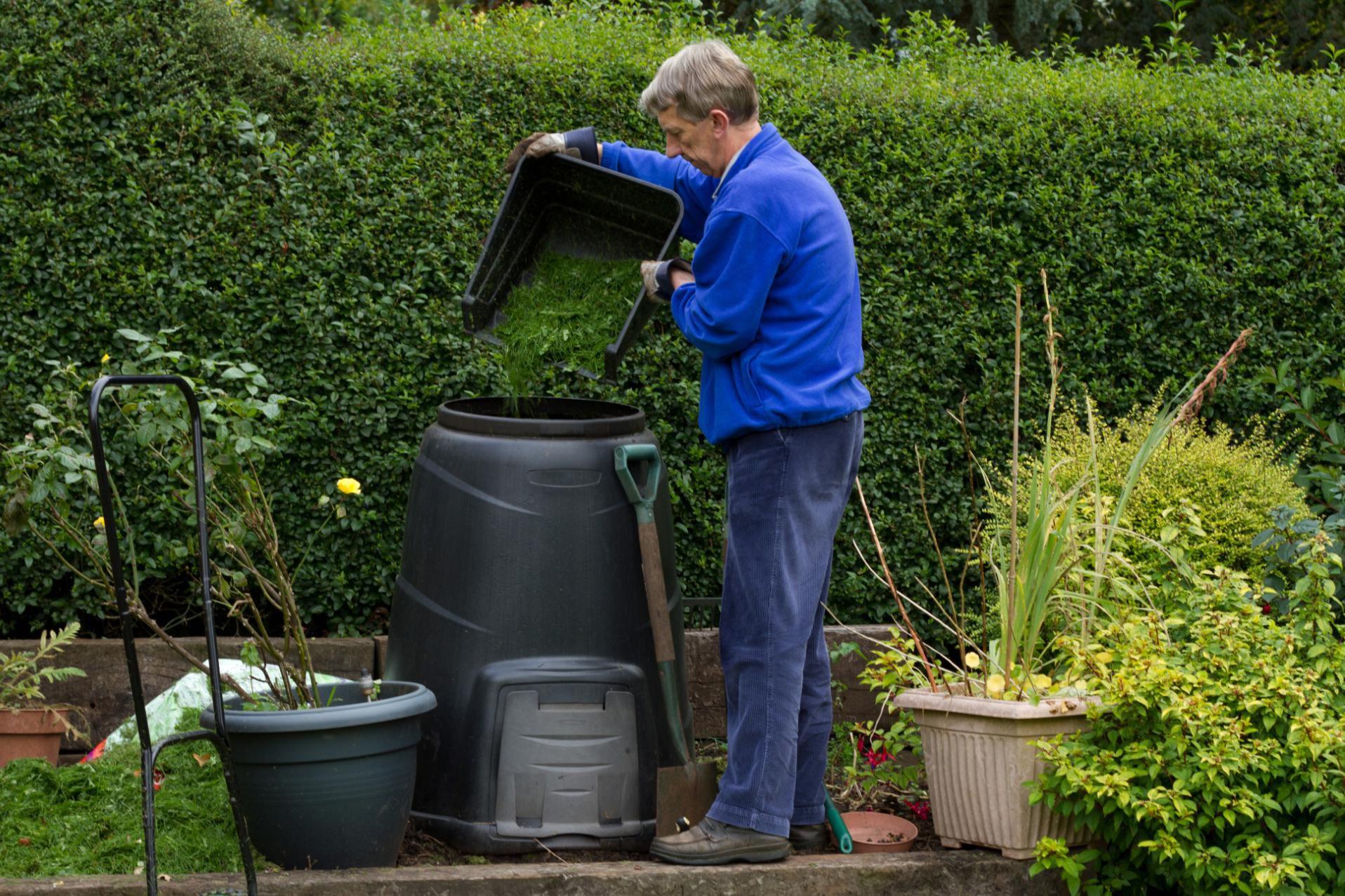 Best Way To Keep Compost In Kitchen