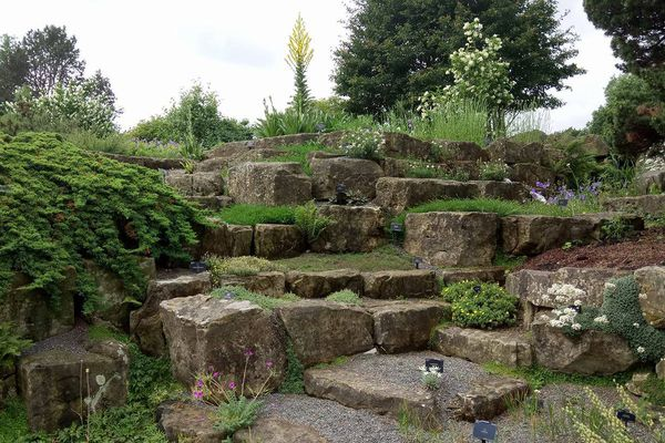 A terraced rock garden at Kew gardens, London UK