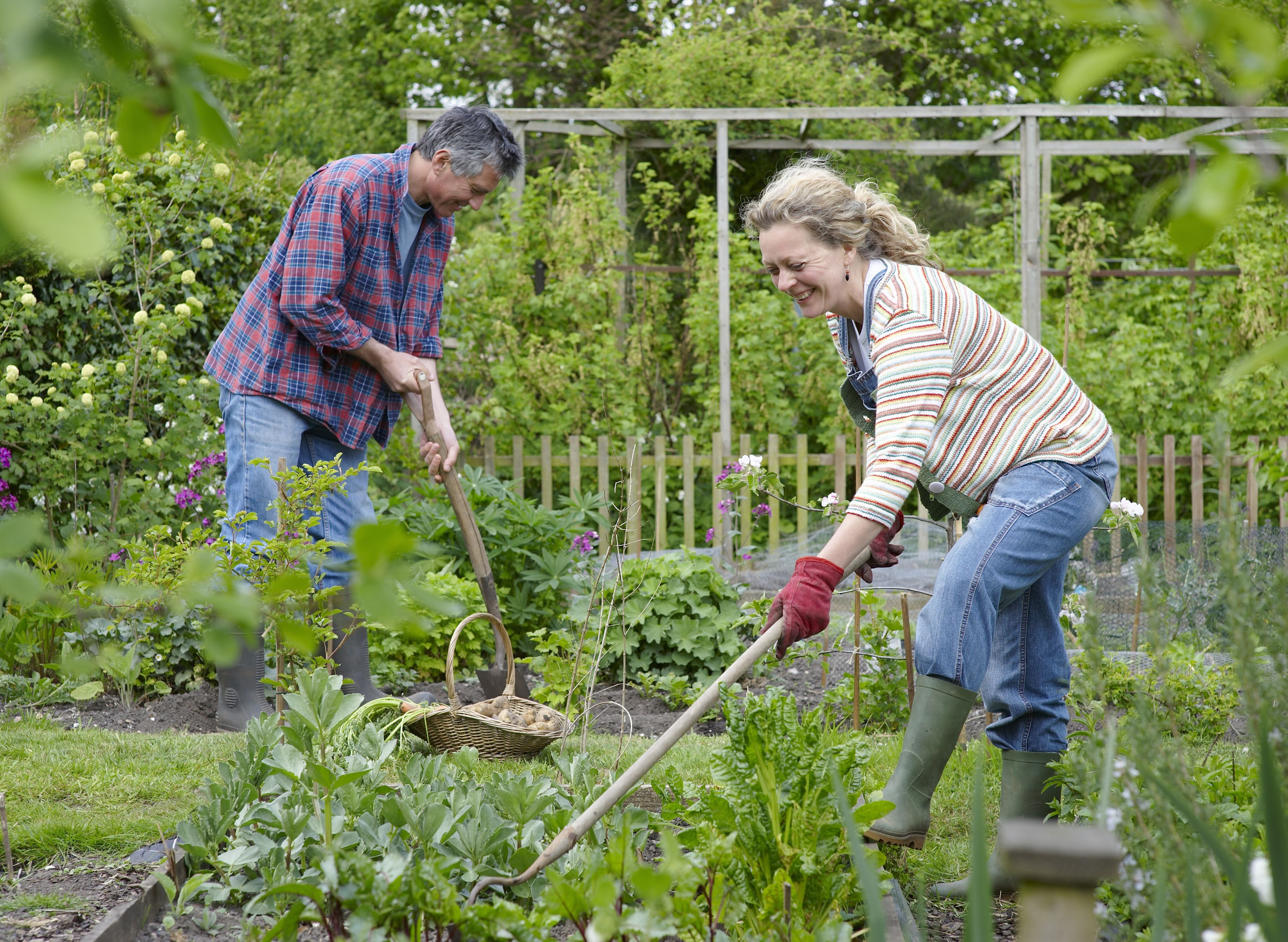 Couple gardening together.