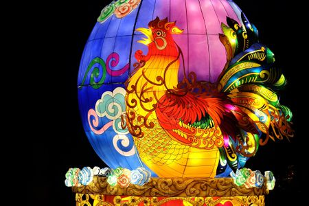 Predictions For The Chinese Zodiac Signs In 2019