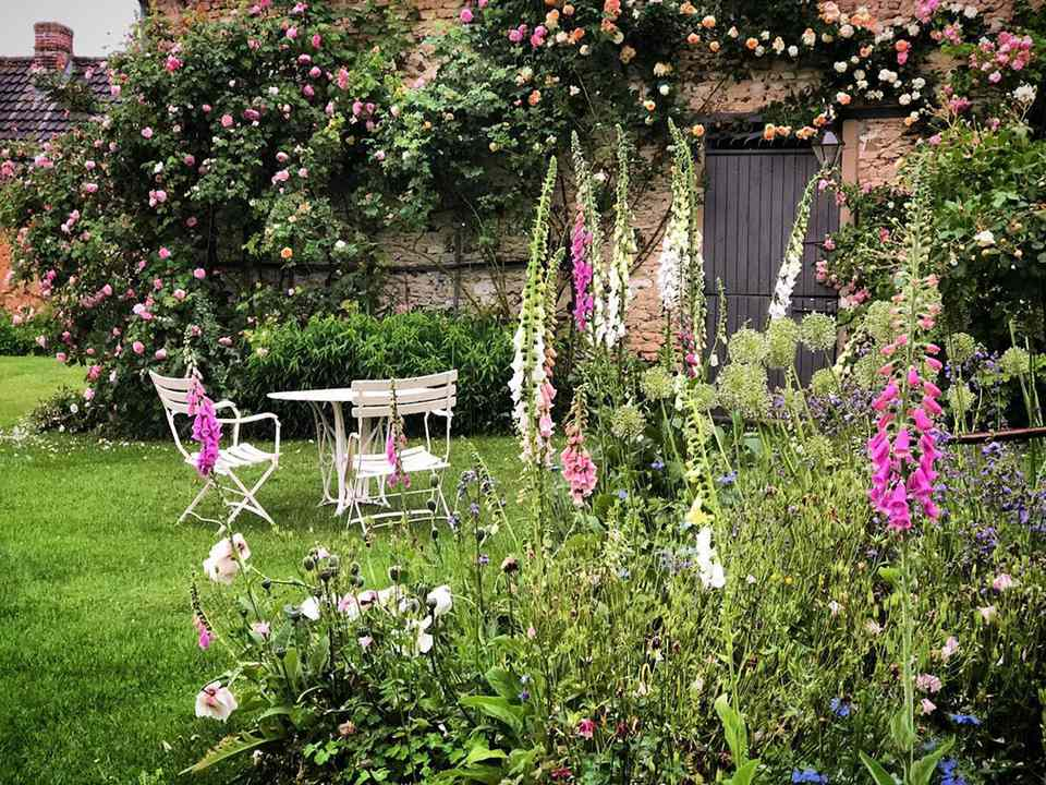 Fox gloves and seats in a garden