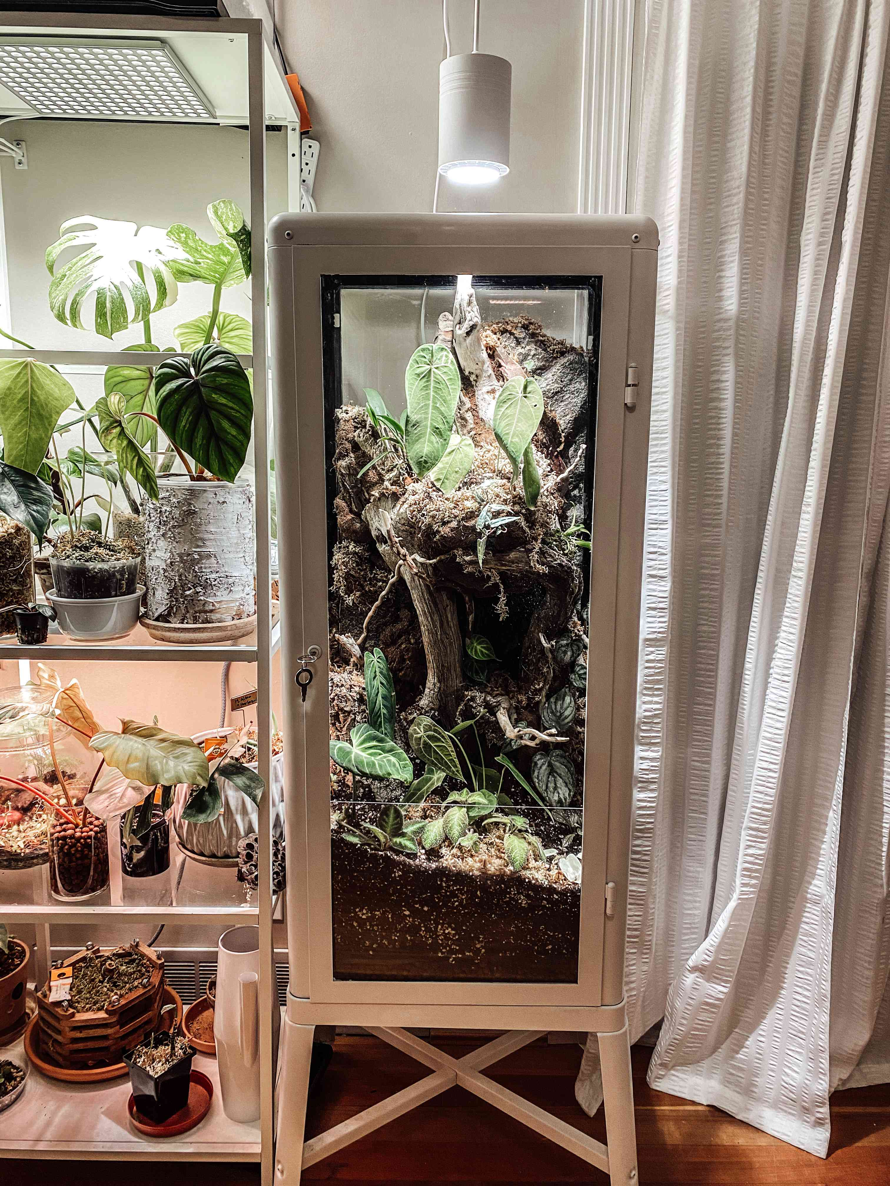 Gorgeous terrarium made via an IKEA cabinet hack by @Camiplants