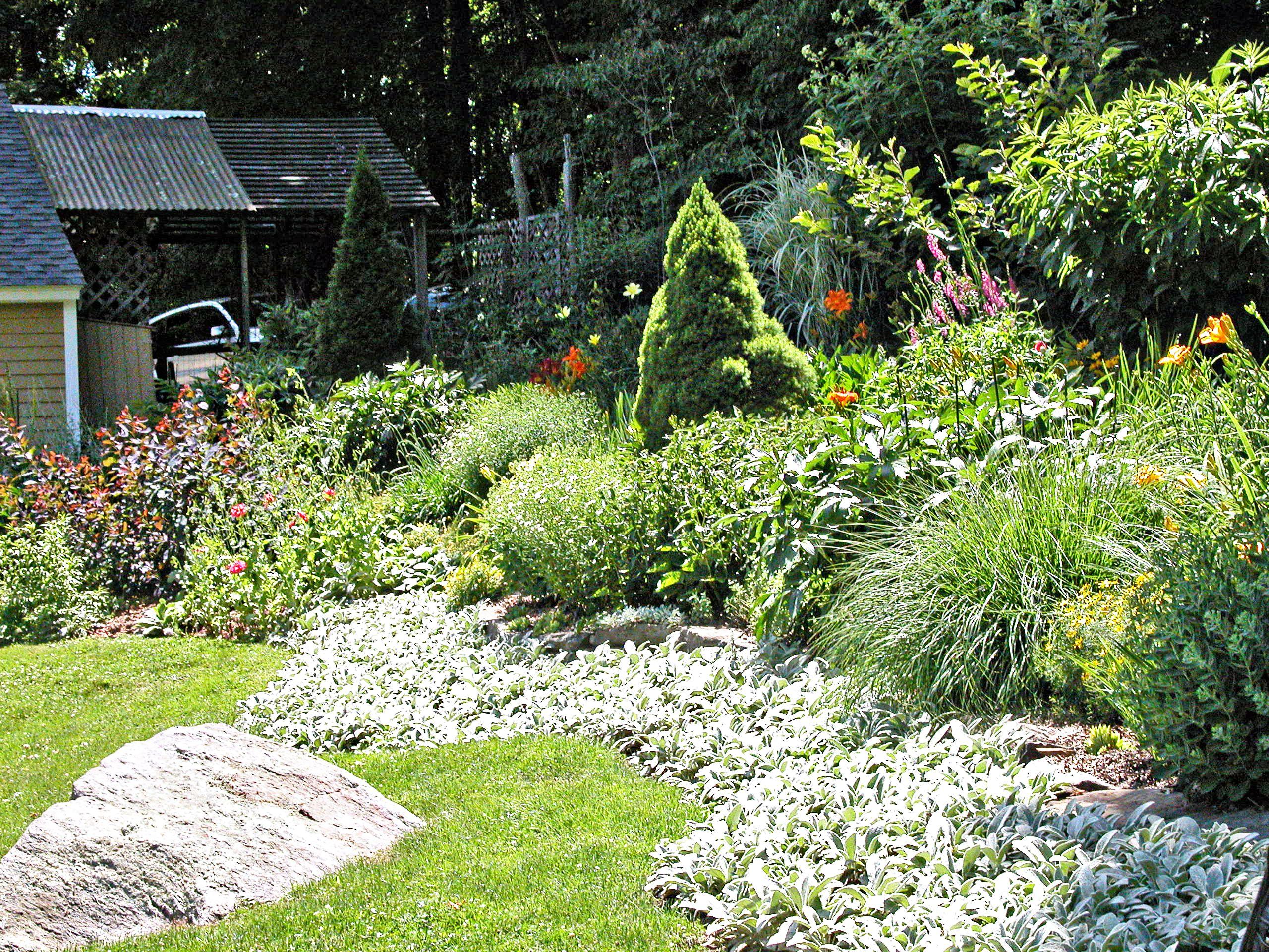 A beautiful garden in a large backyard