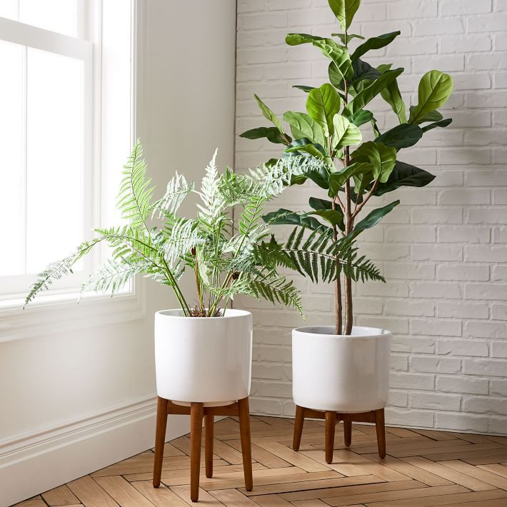 The 7 Best Indoor Planters