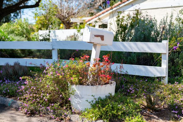 Mailbox surrounded by planted red and purple flowers