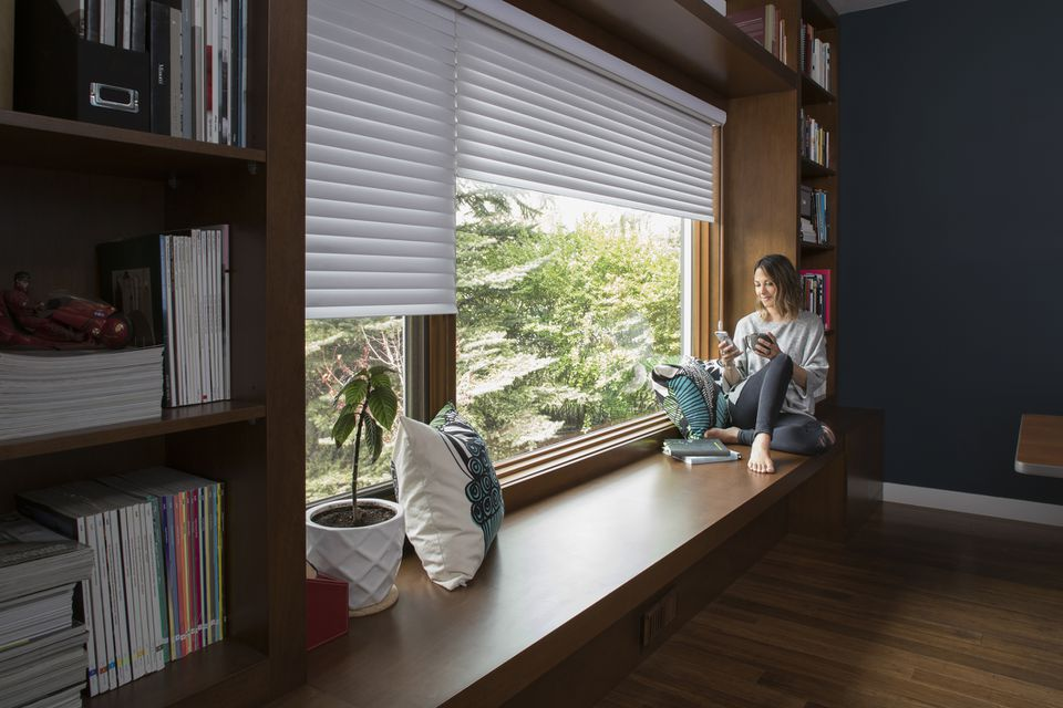 Home office cellular blinds