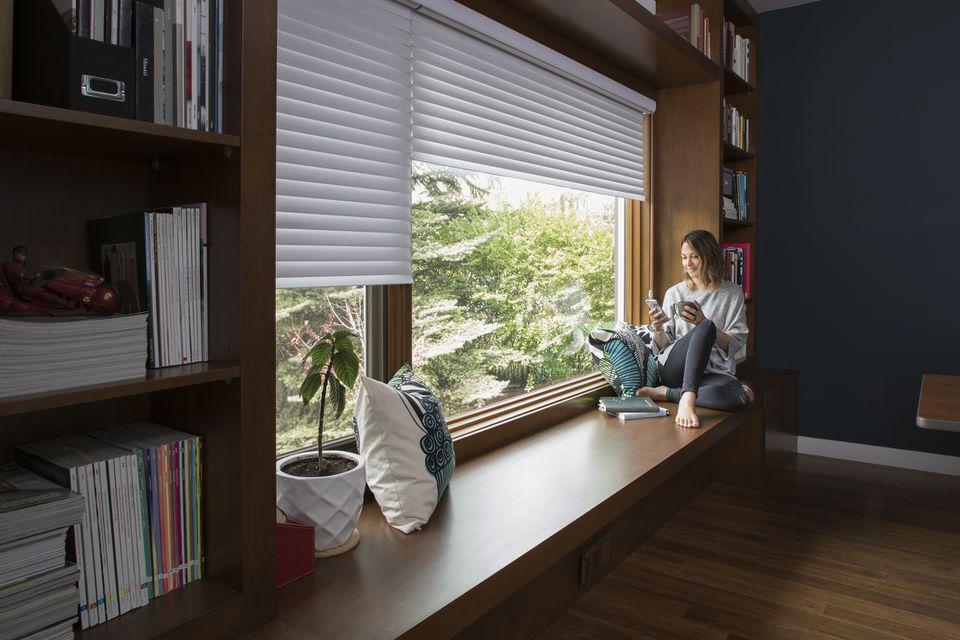Home office cellular blinds