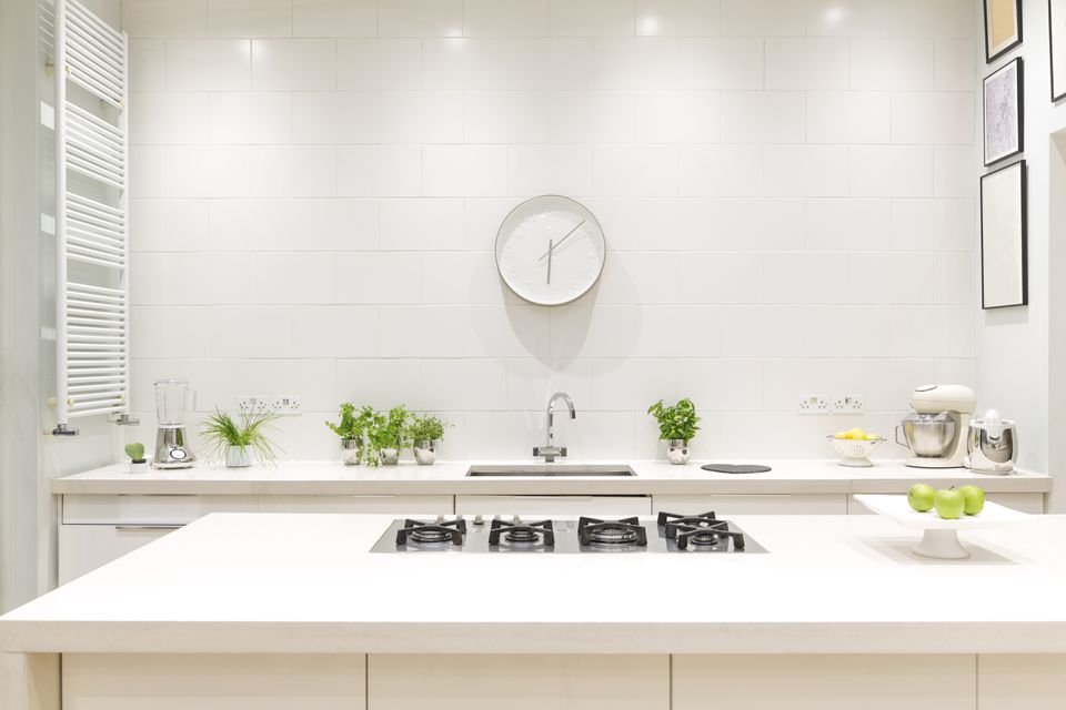 Modern white kitchen with greenery