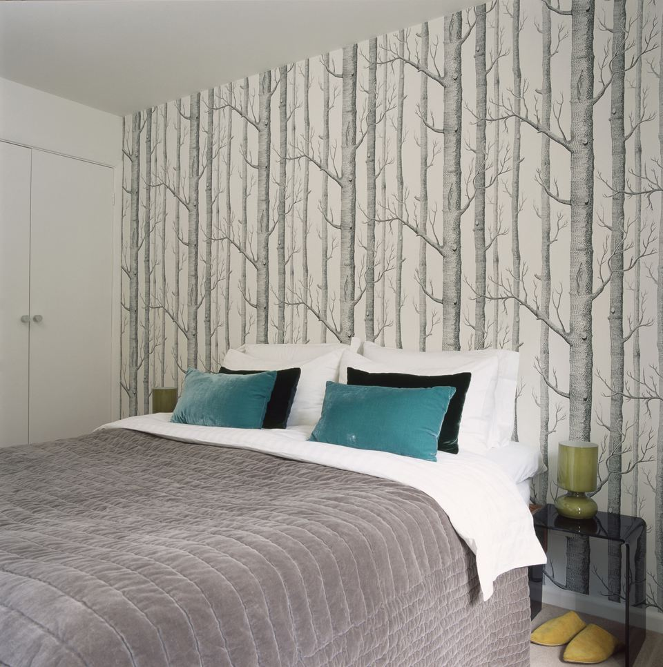 Bedroom with birch tree wallpaper.
