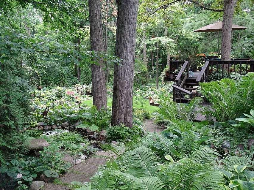 Shade Garden and Deck