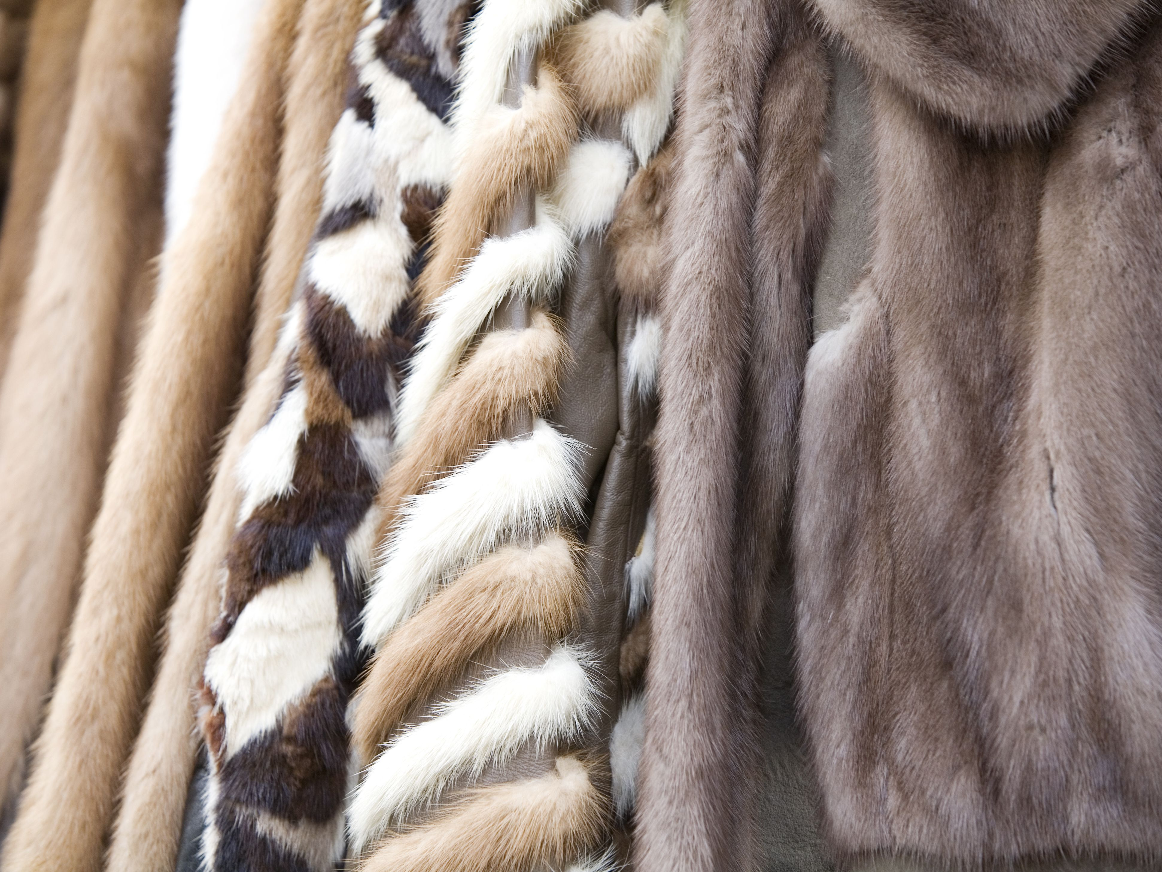 d2d5534f2 How to Clean and Care for Natural Fur Coats