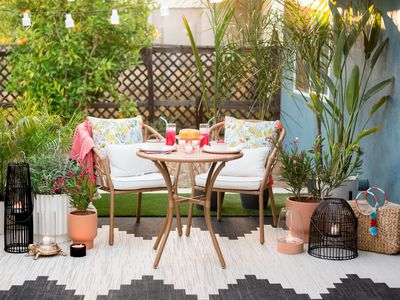 Small Space Gardening Gardening On A Patio Or Terrace