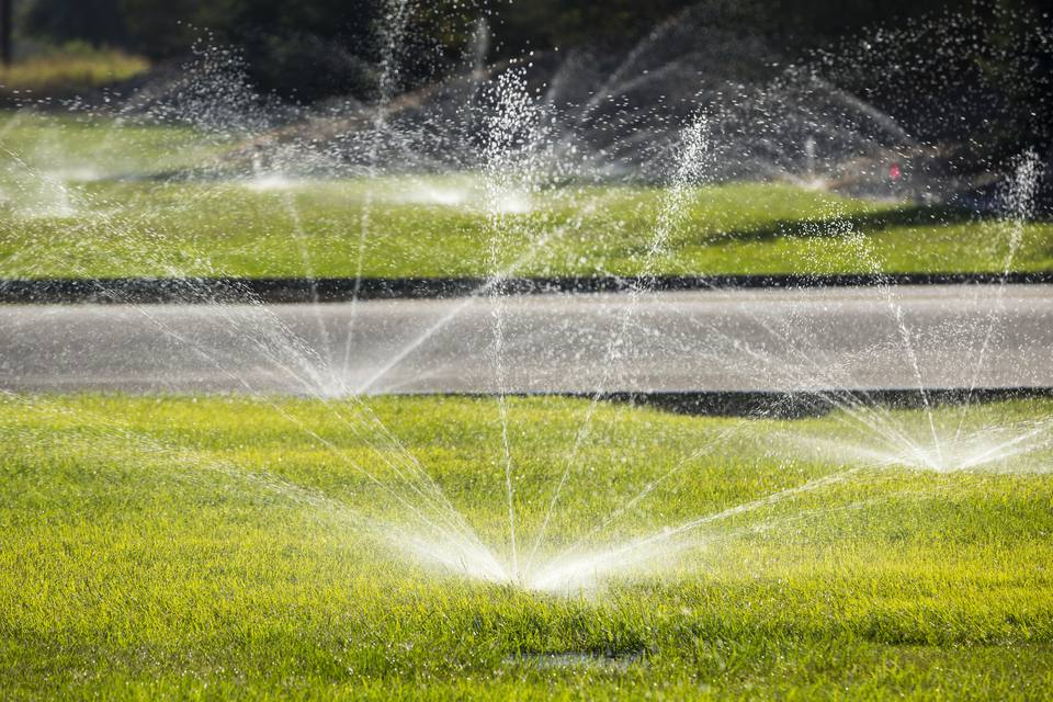 Water irrigation for lawn