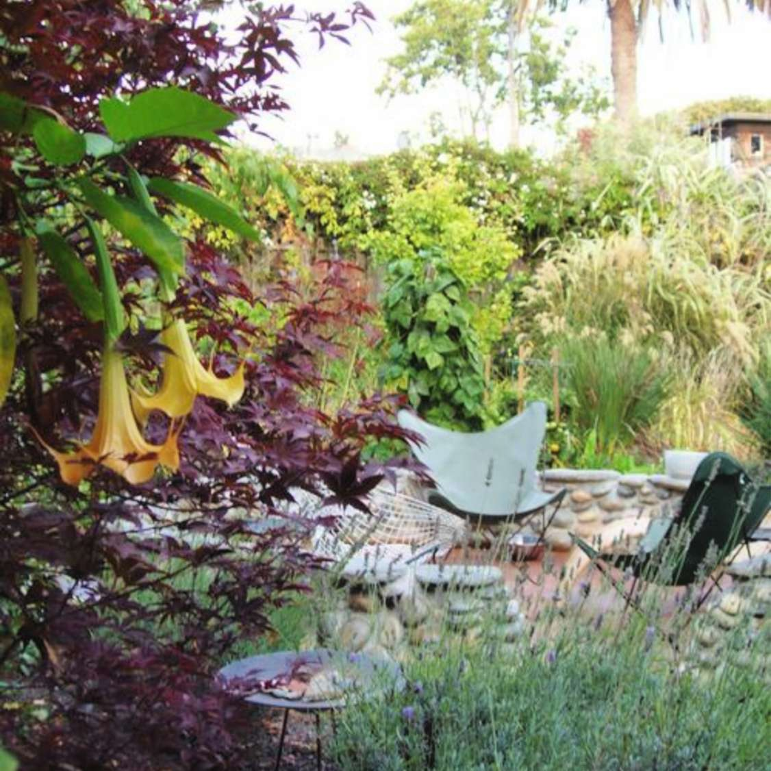 berkeley small yard