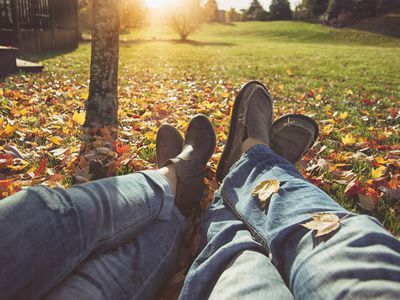 Don T Let Your Lawn Fall Out Of Shape In Autumn Care Tips
