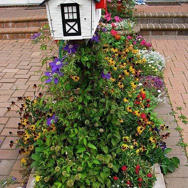 Small Mailbox garden