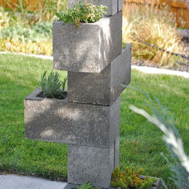 Cinder blocks with plants in them