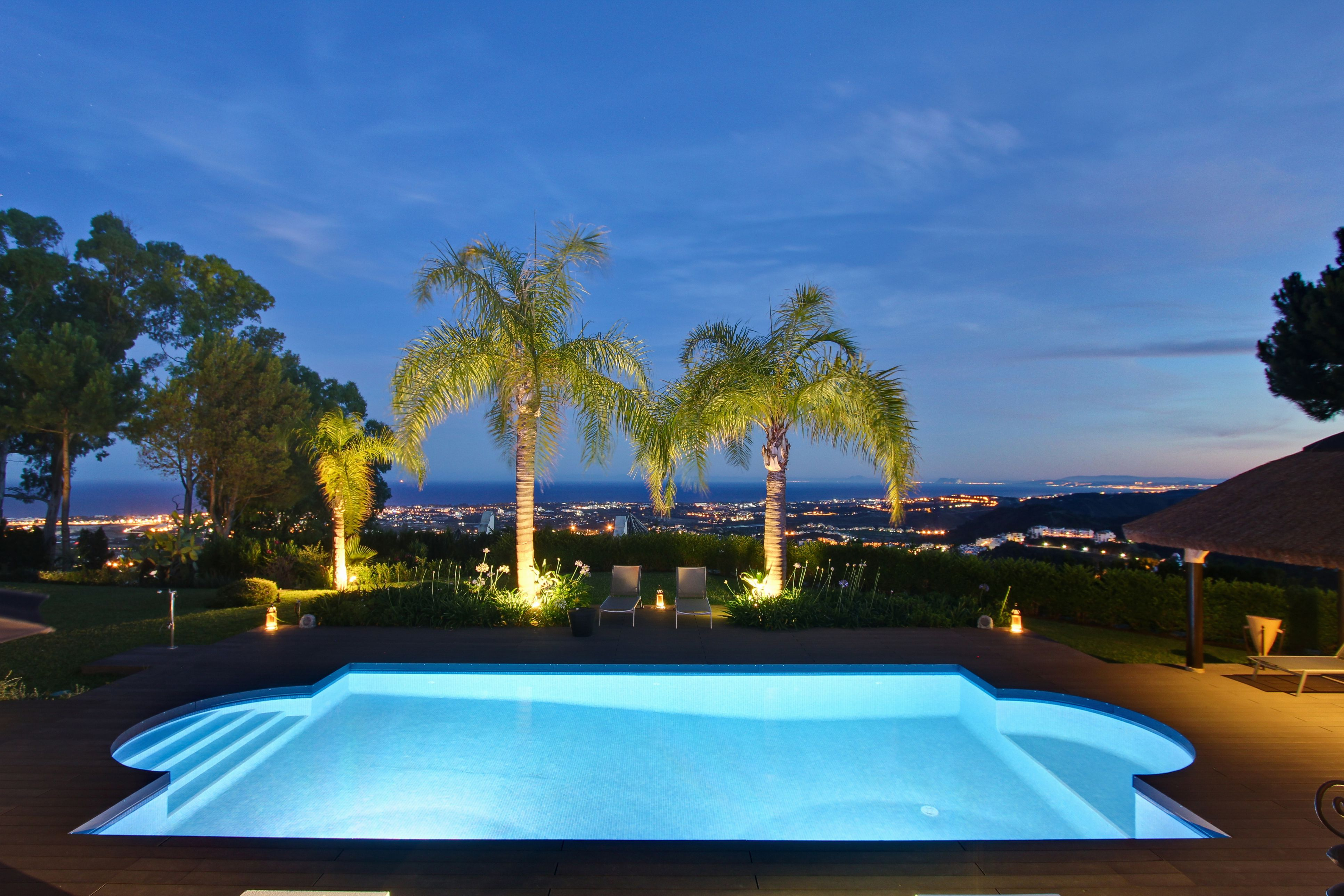 Palm trees and a pool at night
