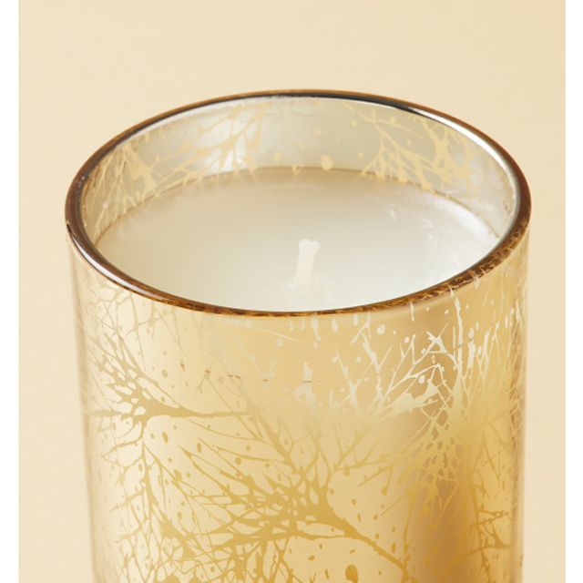 A candle in a gold container