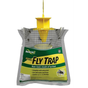 The 8 Best Fly Traps Of 2020