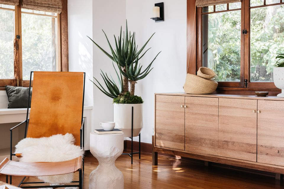 White decorated living room with natural wood trim and large houseplant between wooden cabinets and leather chair