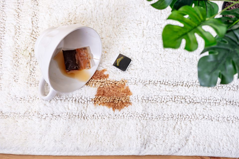 Tea cup spilled over on white rug with brown tea stain and plant in corner