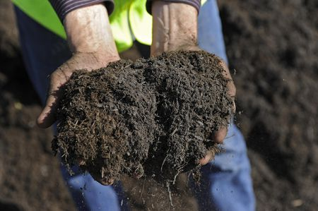 Where to Buy Top Soil and Compost in Bulk