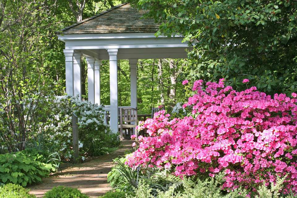 Gazebo and Aaleas in a Southern Garden