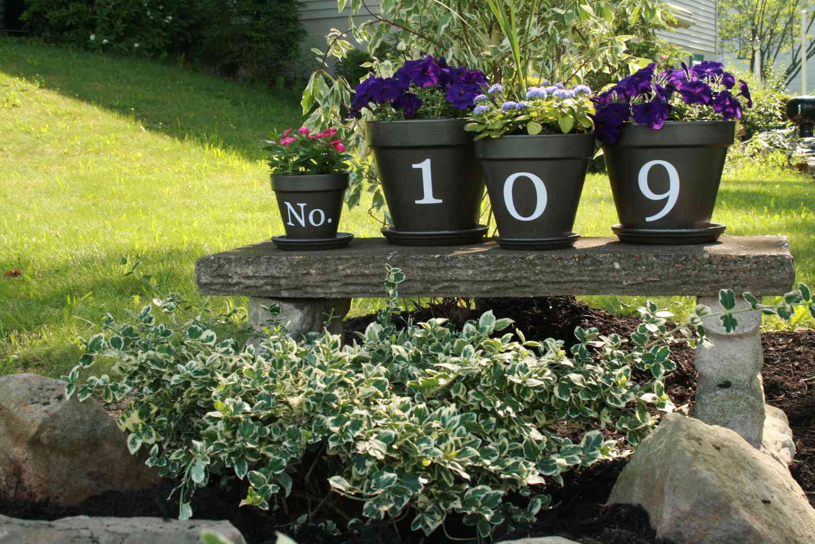 Flower pots painted with address numbers.