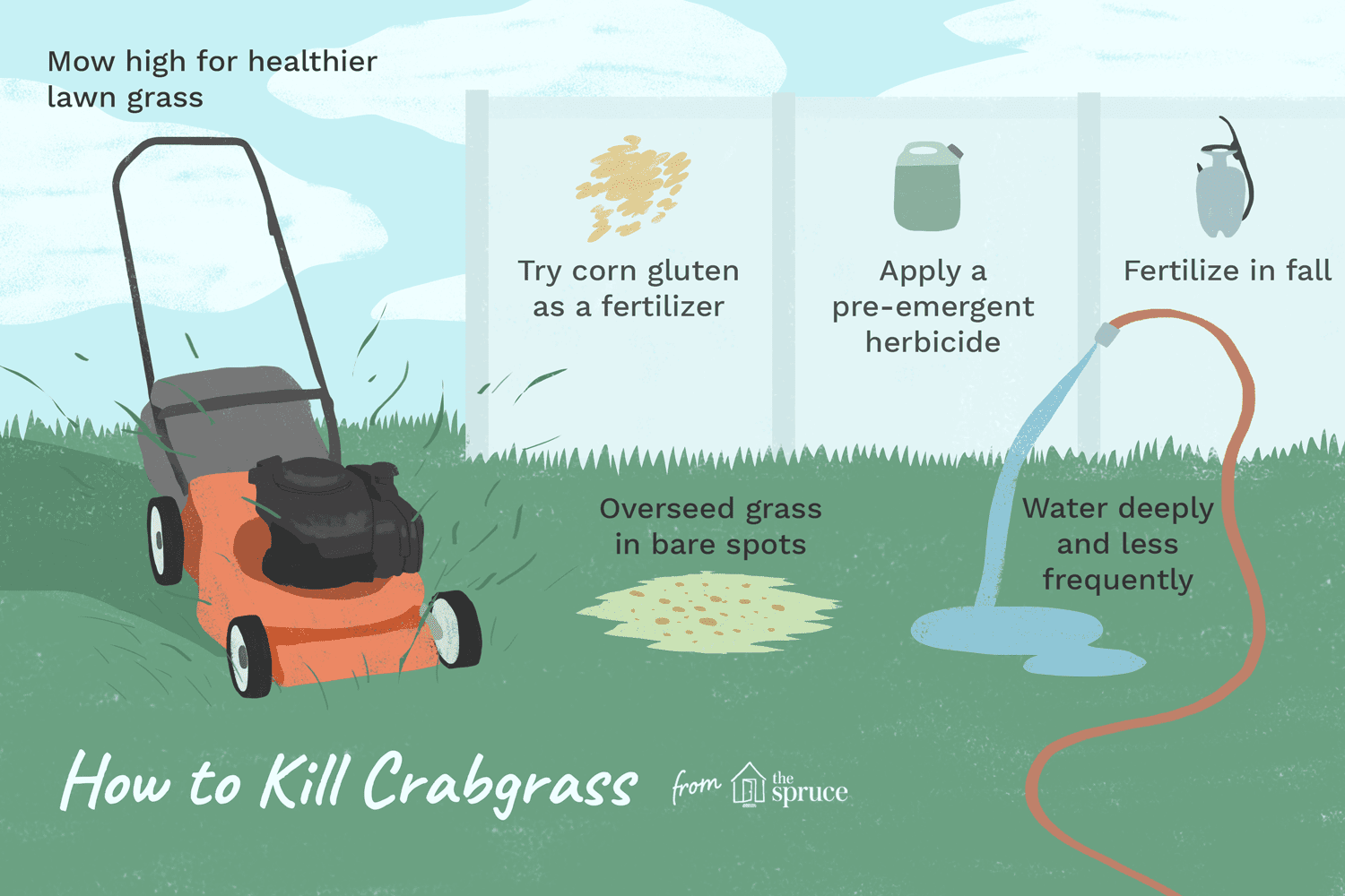 Types Of Preemergent Herbicides
