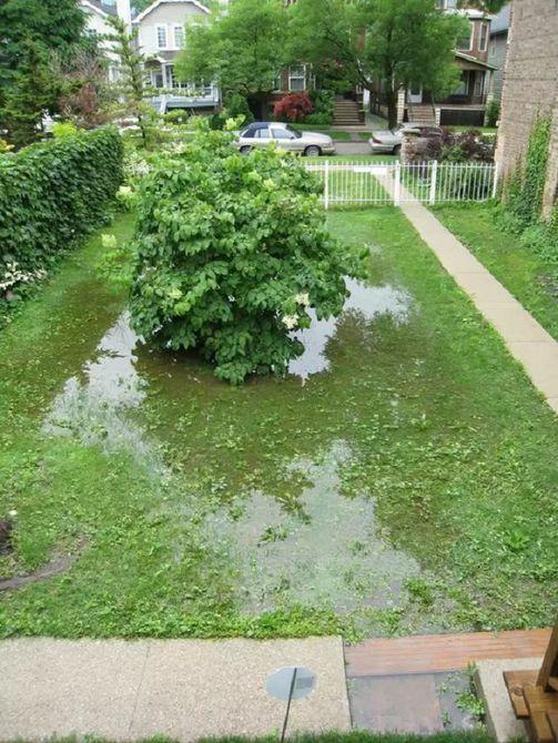 Renovación del patio trasero de la cabaña - Antes