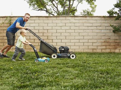 The 8 Best Push Lawn Mowers of 2019