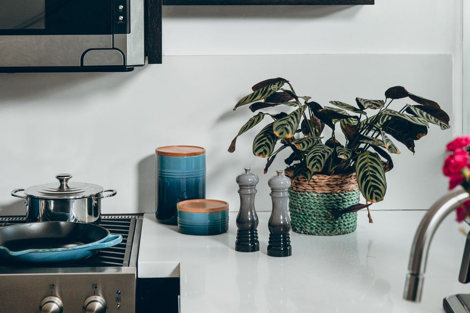 Cooking utensils and plants on counter