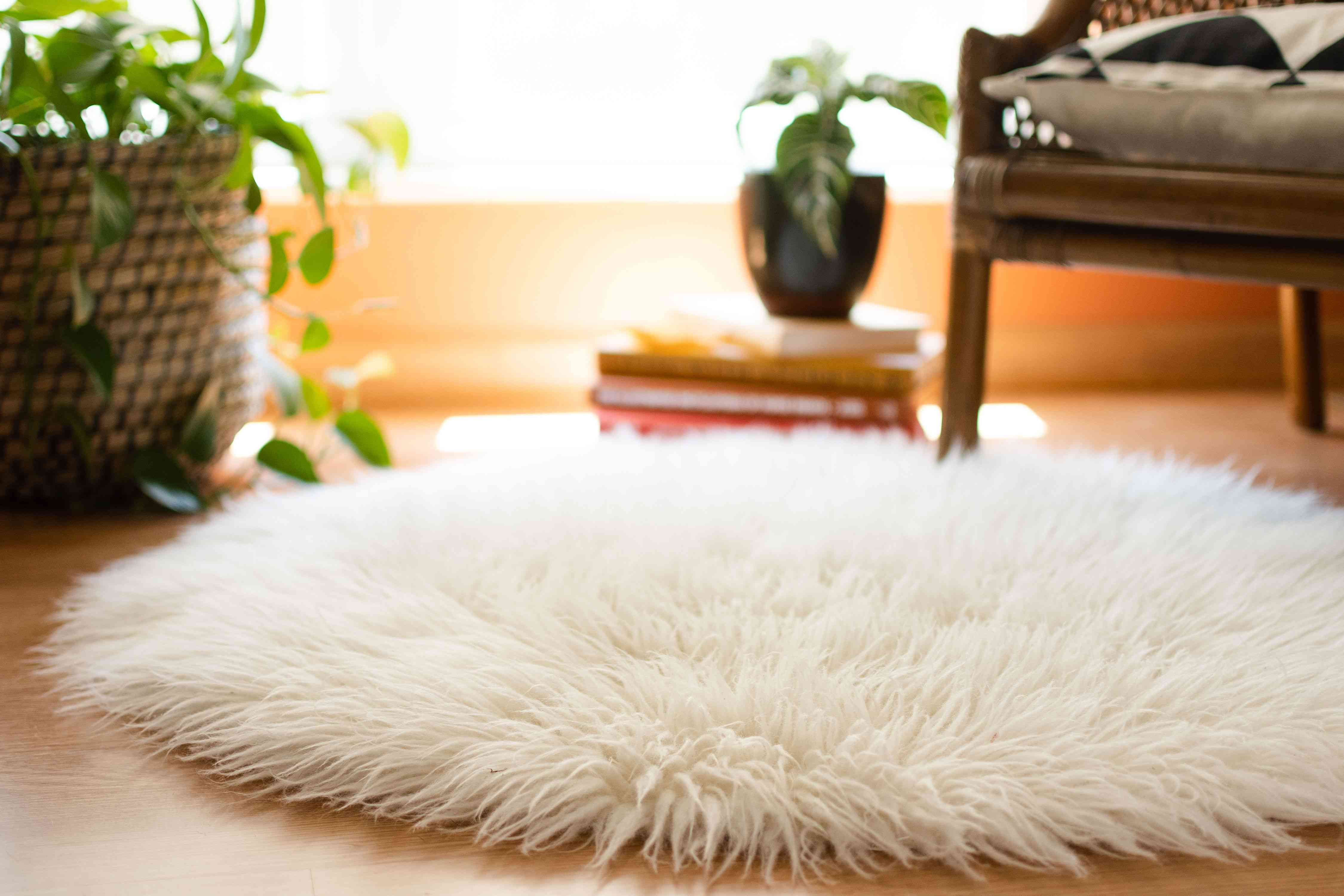 White shag rug in front of houseplants, stacked books and chair corner