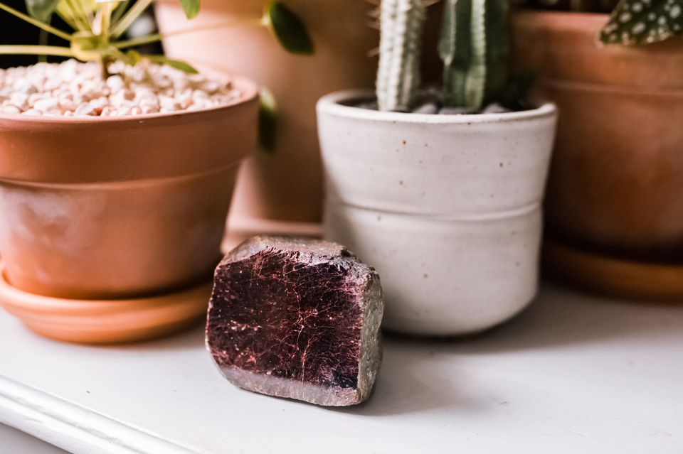 garnet crystal with plants