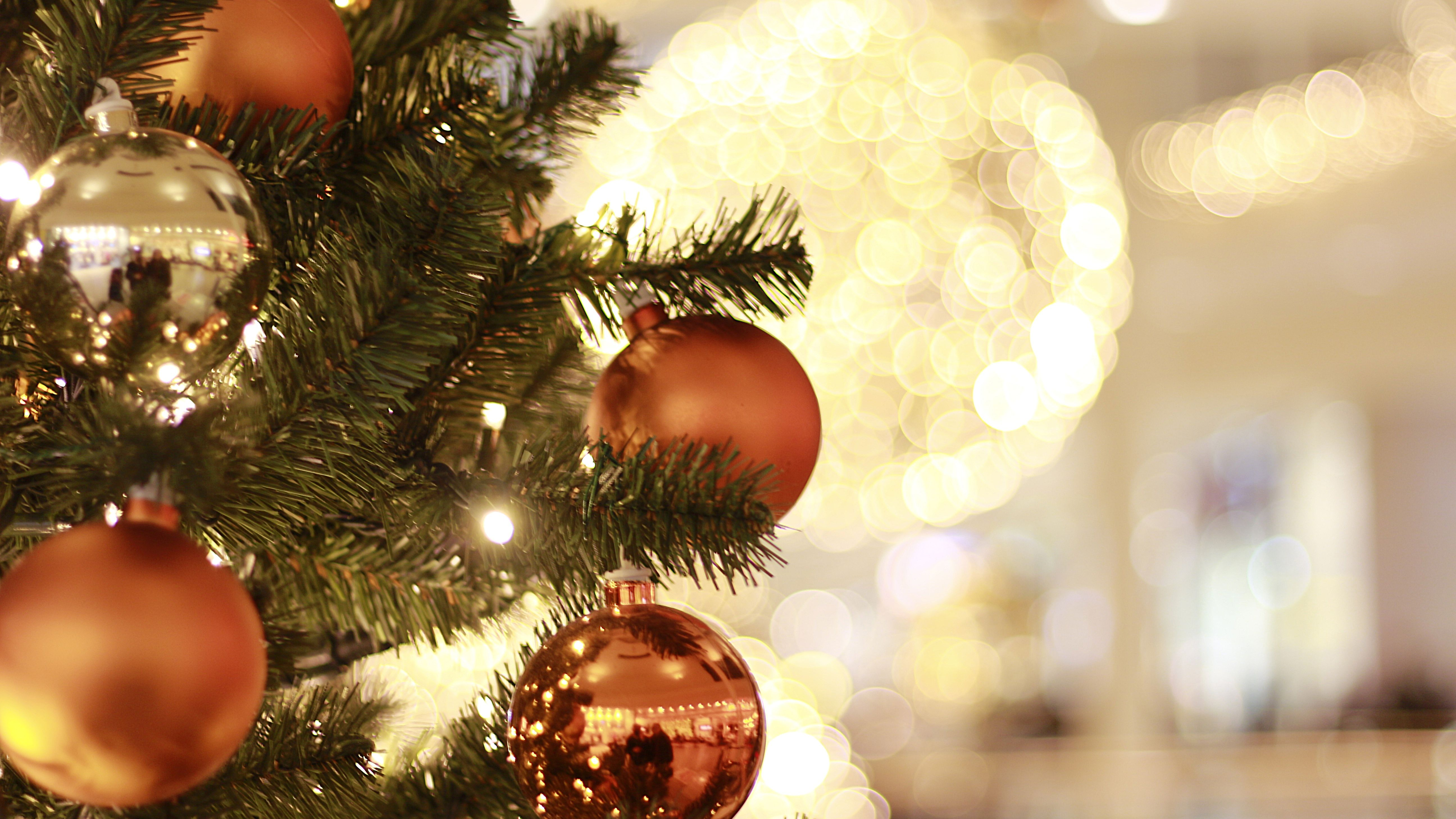 Stupendous The 12 Best Christmas Tree Ornaments Of 2019 Download Free Architecture Designs Scobabritishbridgeorg