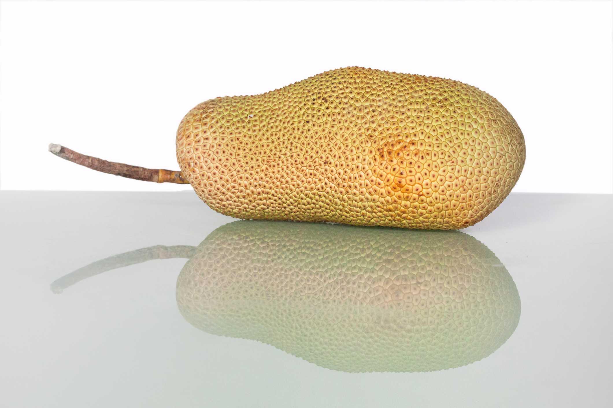 jackfruit against white background