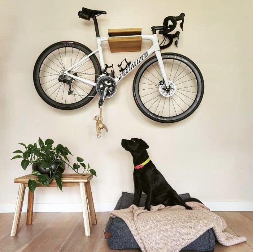 hanging bike shelf with black dog looking at the bik